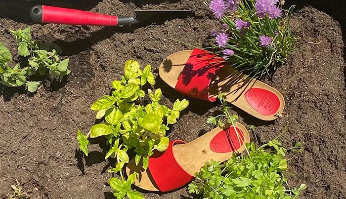 Nachhaltige Sandalen Nora im Hochbeet
