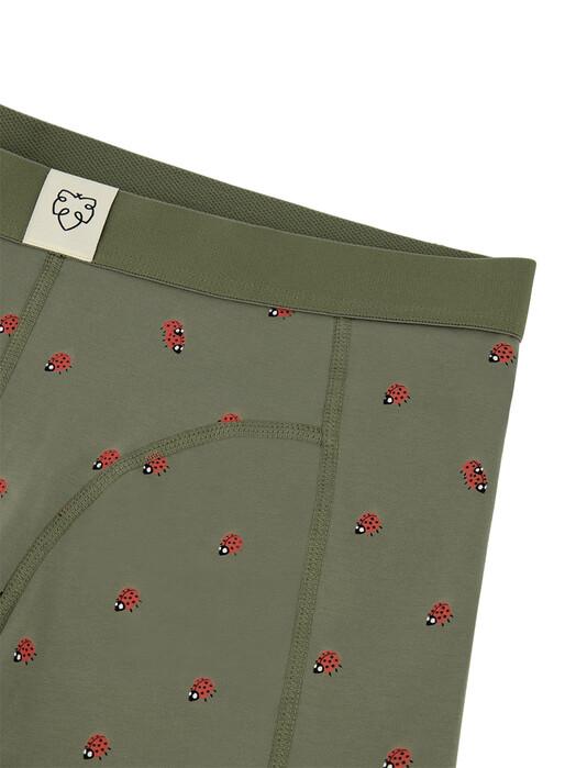 A-dam Underwear Unterwäsche  Boxerbrief Leander [khaki] jetzt im Onlineshop von zündstoff bestellen