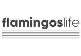 Flamingo's Life: Vegan und nachhaltige Sneaker