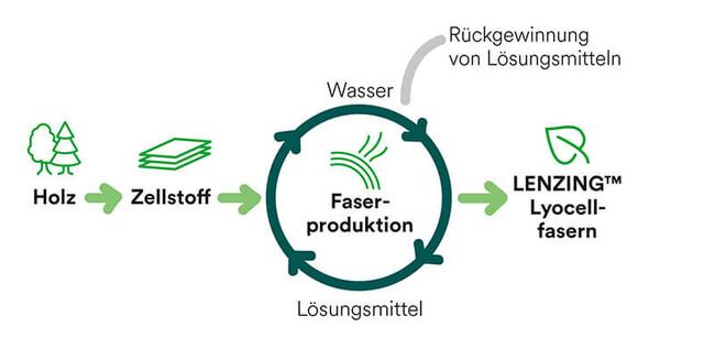 Schematische Darstellung der Lyocell-Produktion